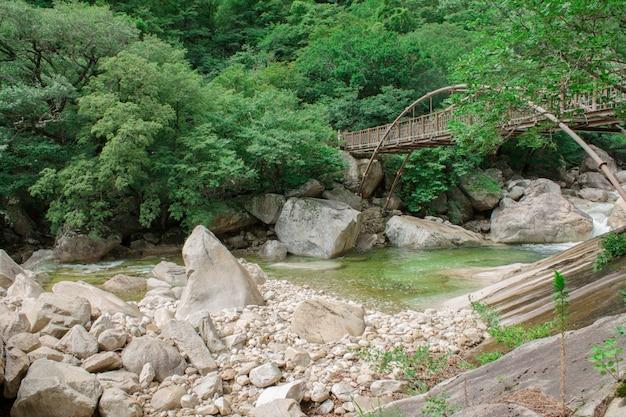 Iron bridge over mountain river