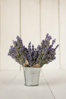 In an iron bucket are three bouquets of fresh olive lavender on white.