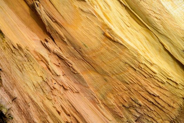 Struttura di legno irregolare
