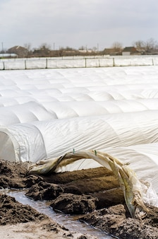 小さな温室の農業繊維の下の灌漑列spunbond