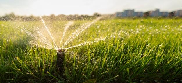Поливной дождеватель поливает газон.