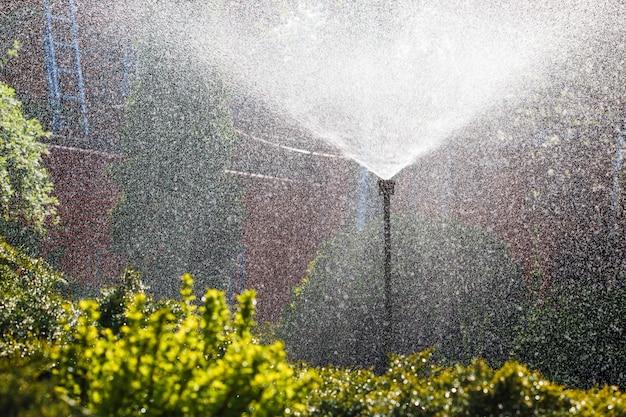 Система орошения разбрызгивает воду в домашнем саду.