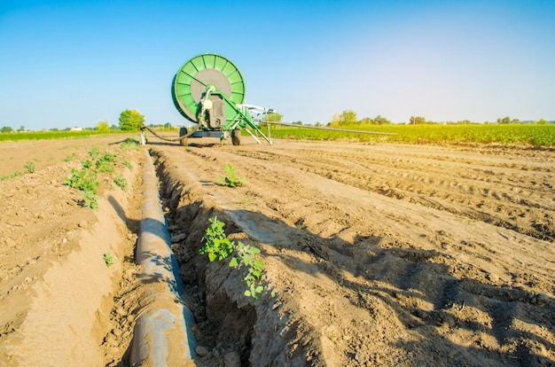 Irrigation system for watering of agricultural crops with a big hose reel.