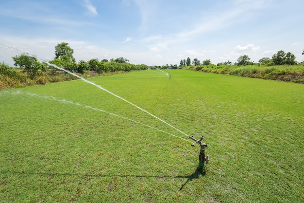 Irrigation system watering the green grass field