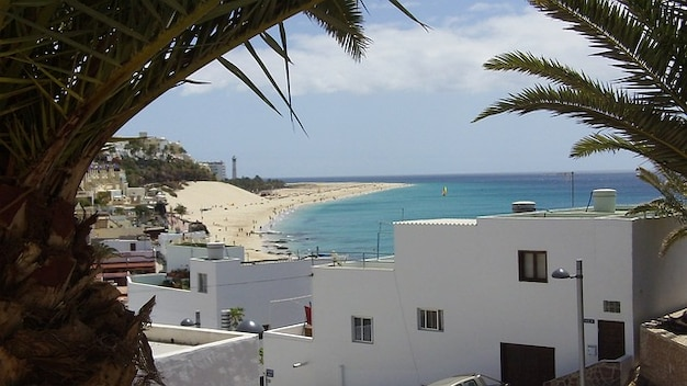 Islands fuerteventura jandia canary summer coast