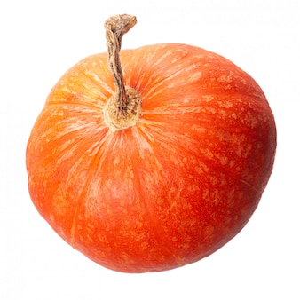 Isolate pumpkin on a white background ripe vegetable