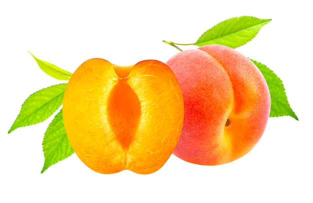 Isolated apricots