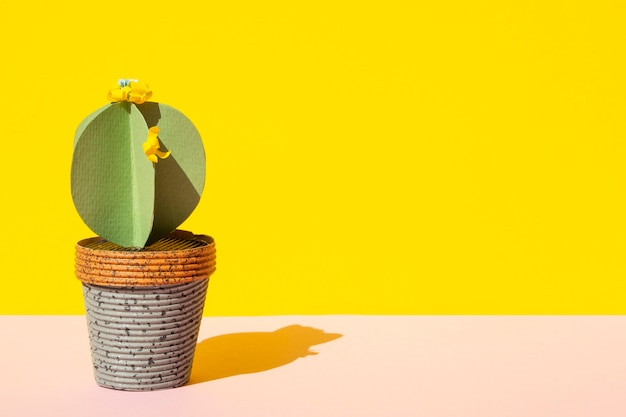 Isolated cactus in pot with copy space