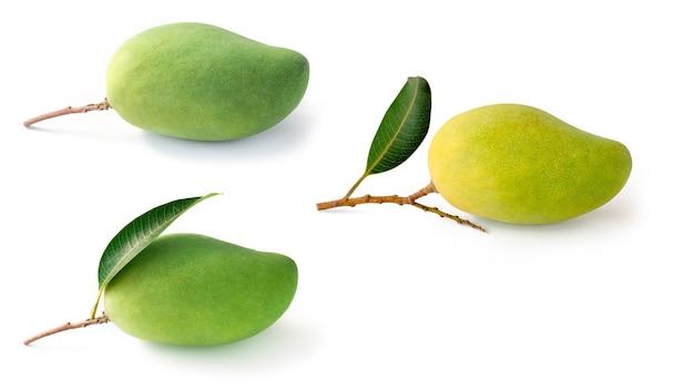 白い背景の上の孤立したコレクションの緑のマンゴーフルーツ
