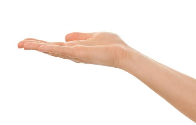 Изолированная женская рука