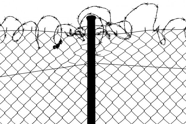 Isolated fence with barbed wire