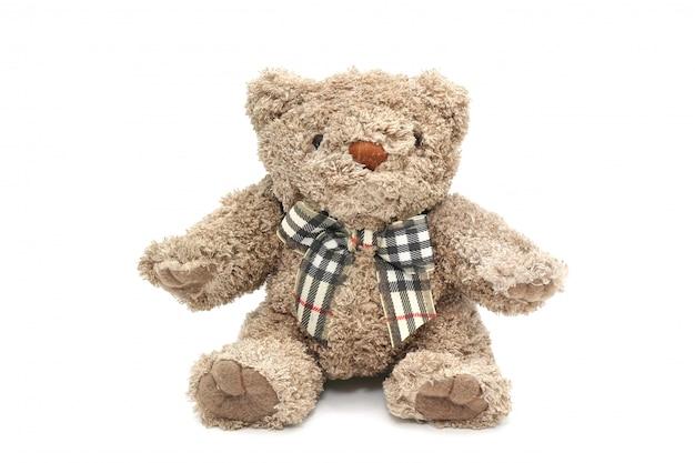 Isolated fluffy teddy bear