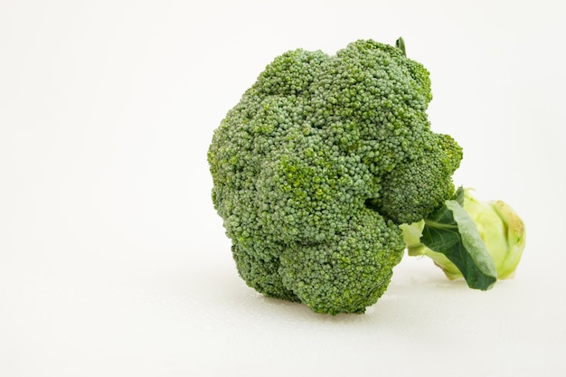 Isolated green broccoli vegetable on white. healthy food.
