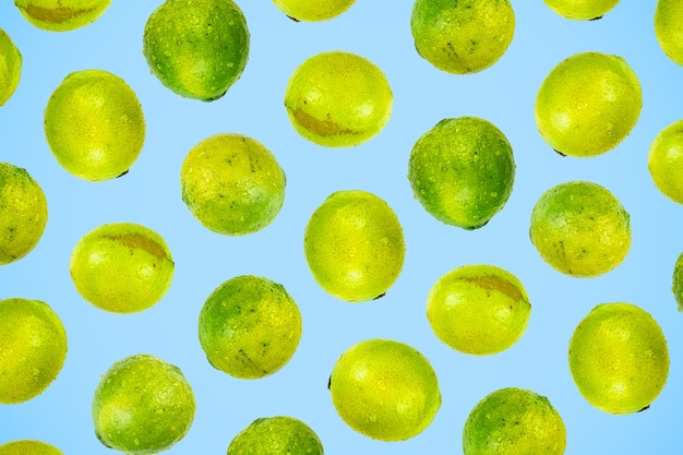 Isolated green lime pattern or wallpaper on light blue background. summer concept of fresh ripe whole lime fruits shot from above