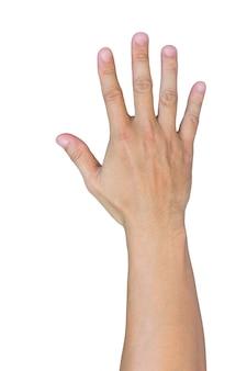 白い背景の上の孤立した手
