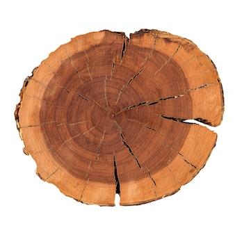 Изолированный натуральный декоративный круглый кусок древесины сосны