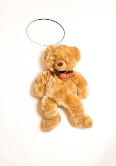 Isolated shot of cute teddy bear with copyspace speech bubble lying on floor