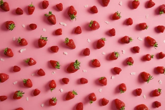 분홍색 배경, 코코넛 조각 주위에 고립 된 녹색 줄기와 맛있는 빨간 딸기의 고립 된 총. 여름 수분이 많은 과일은 다이어트 외에도 다양한 잼, 젤리 및 디저트에 사용할 수 있습니다.