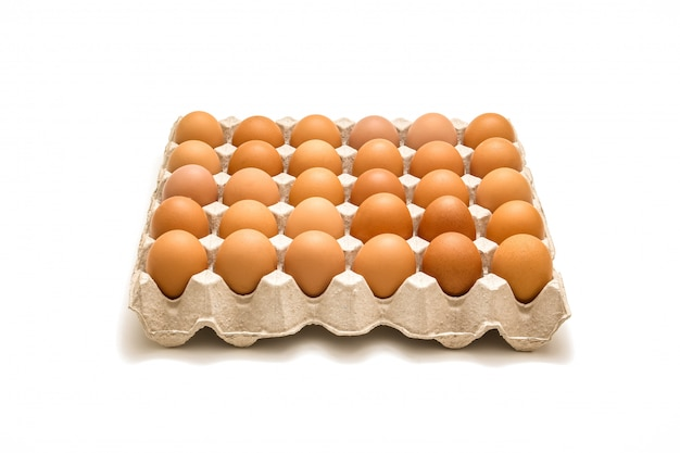 Isolated tray of eggs on white