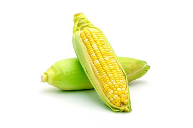 Isolated two tone sweet corn