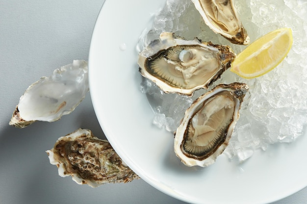 Isolated white plate of opened oysters with lemon on white