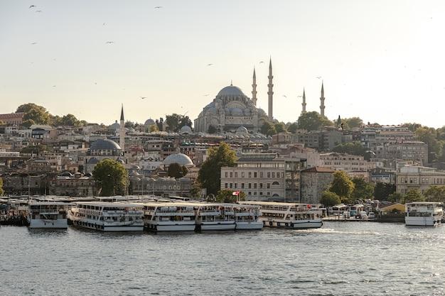 夕方のイスタンブール。ガラタ橋からエミノニュとスレイマニエモスク(オスマン帝国モスク)への眺め。七面鳥。