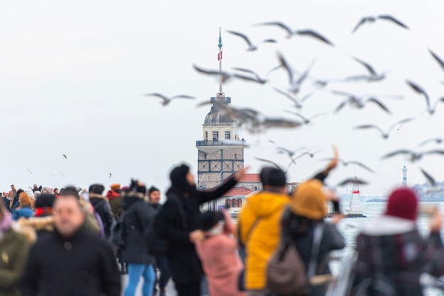 Istanbul, people feed seagulls in front of maiden's tower or kiz kulesi in turkey