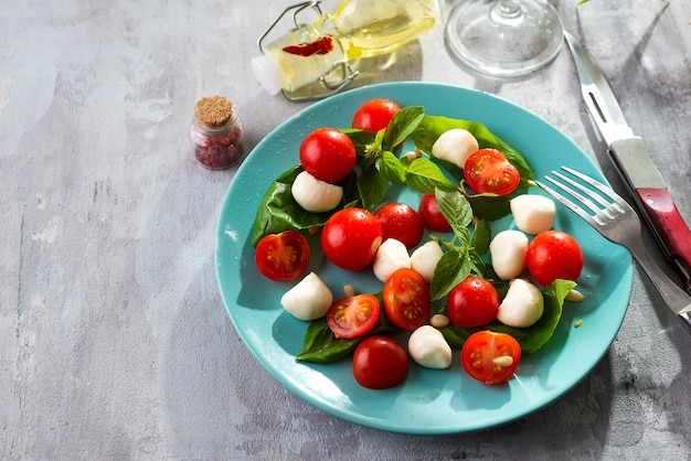 Italian caprese salad with red tomatoes, fresh organic mozzarella and basil on stone table