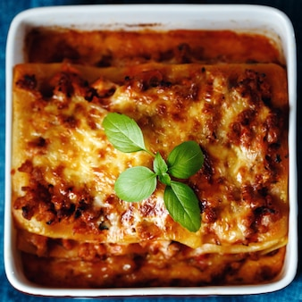 Italian food style. lasagna plate.
