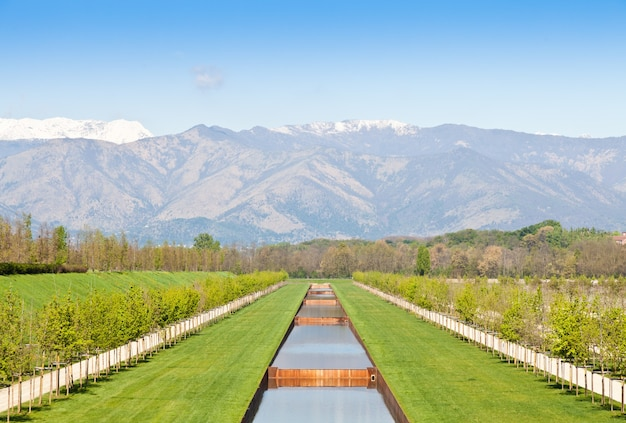 Italy - water pool in green field with alps mountains on background
