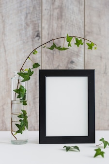 Ivy in glass vase and white photo frame on desk against wall