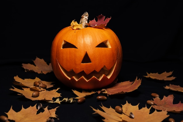Jack o lantern pumpkin with orange autumn maple leaves and acorns