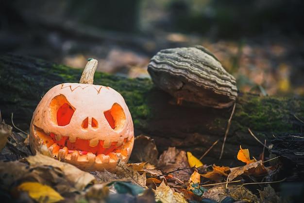Джек о фонарь со злым лицом жуткая тыква на хэллоуин на сухих опавших осенних листьях