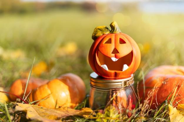 Тыквенная лампа jack'o, кошелек или жизнь в день хэллоуина