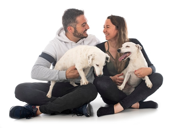 Jack russel terriers and couple in front of white background