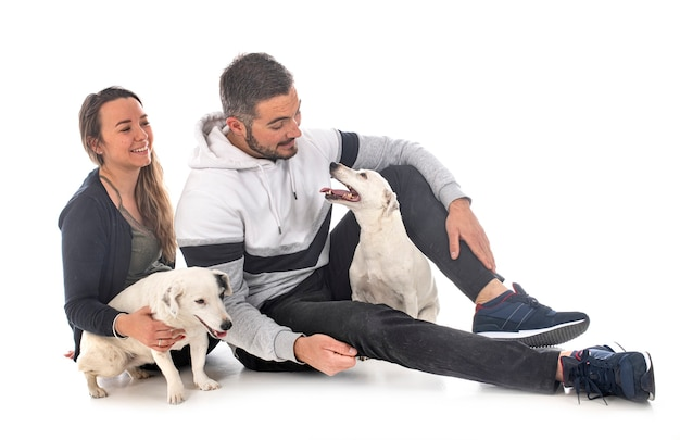 Jack russel terriers and couple