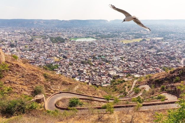 Jaipur skyline and the road to nahargarh fort, india.