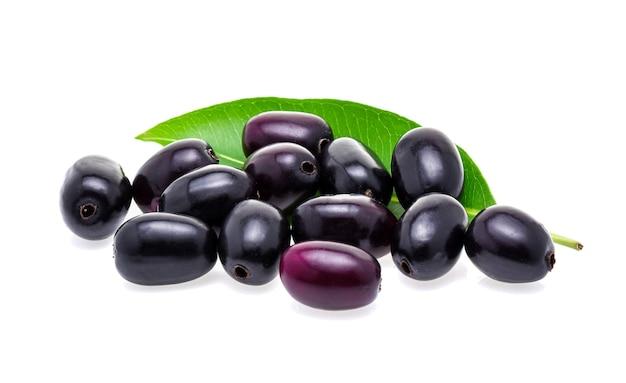 Jambolan plum or java plum isolated on white
