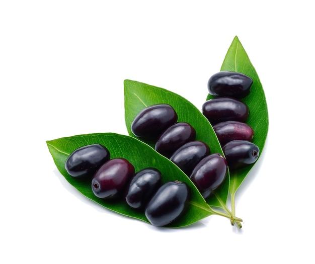 Jambolan plum, java plum (syzygium cumini) isolate on white background