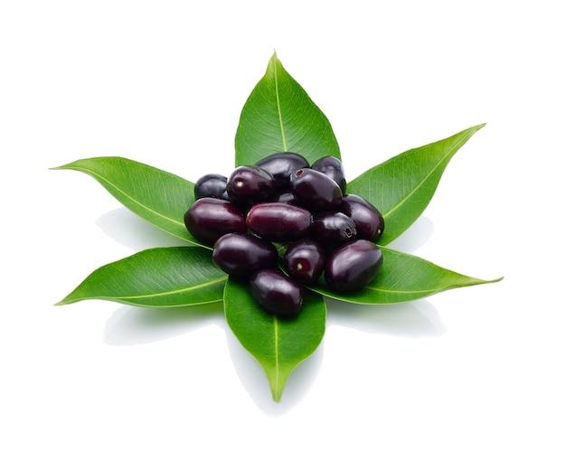 Jambolan plum, java plum (syzygium cumini) on white background