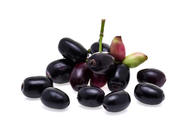 Jambolan plum or java plum on white background Premium Photo