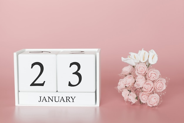 January 23rd. day 23 of month. calendar cube on modern pink background