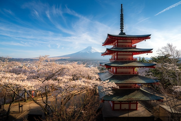 Japan at chureito pagoda and mt. fuji in the spring with cherry blossoms full bloom during sunrise.