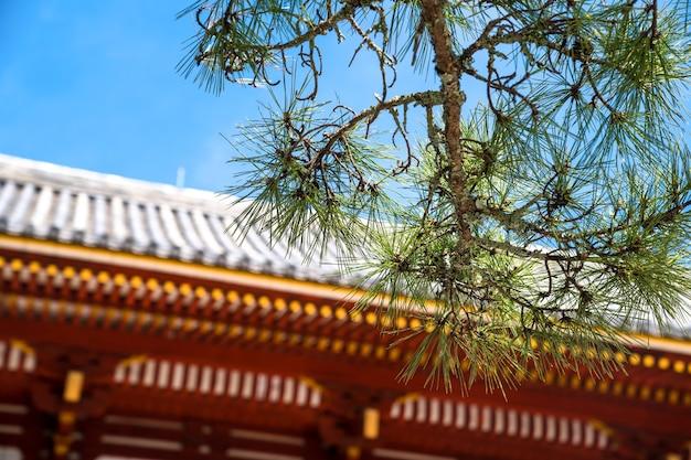 일본 나무는 가지와 잎에 가깝습니다. 빨간색 빈티지 성 배경을 흐리게 합니다.