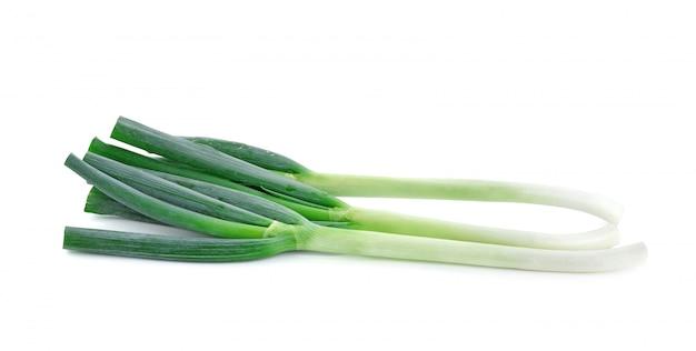 Japanese bunching onion on white background