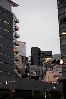 Japanese culture with buildings