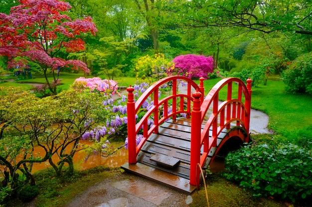日本庭園、パーククリンゲンダール、ハーグ、オランダ