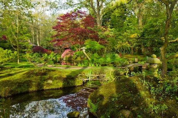 Japanese garden in spring, den haag, holland