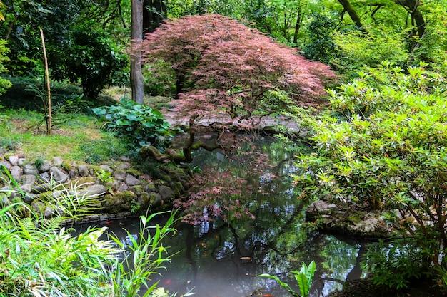 Japanese garden with lake in batumi botanical garden, georgia