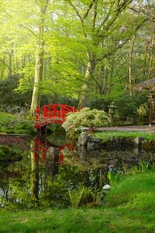 Японский сад с красным мостом в солнечный день, гаага, голландия